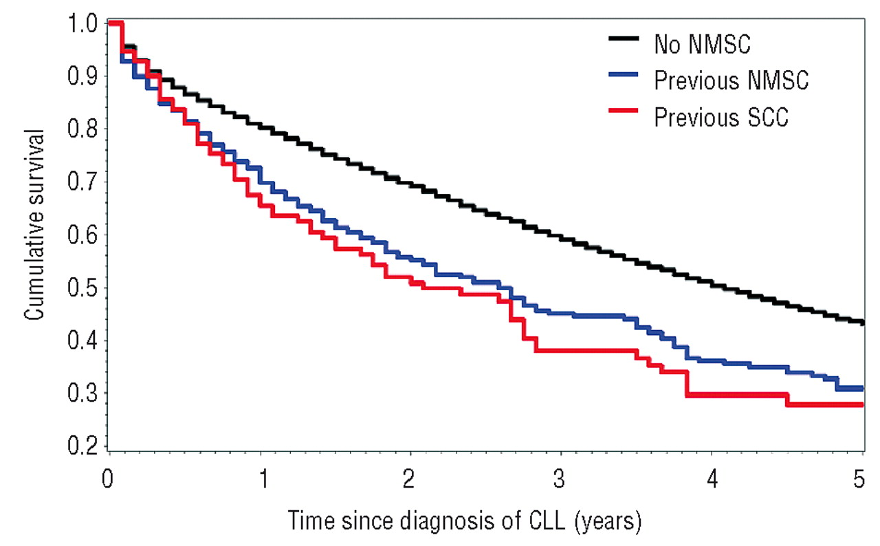 Prior History Of Non Melanoma Skin Cancer Is Associated With Increased Mortality In Patients With Chronic Lymphocytic Leukemia Haematologica